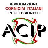 ACIP_logo