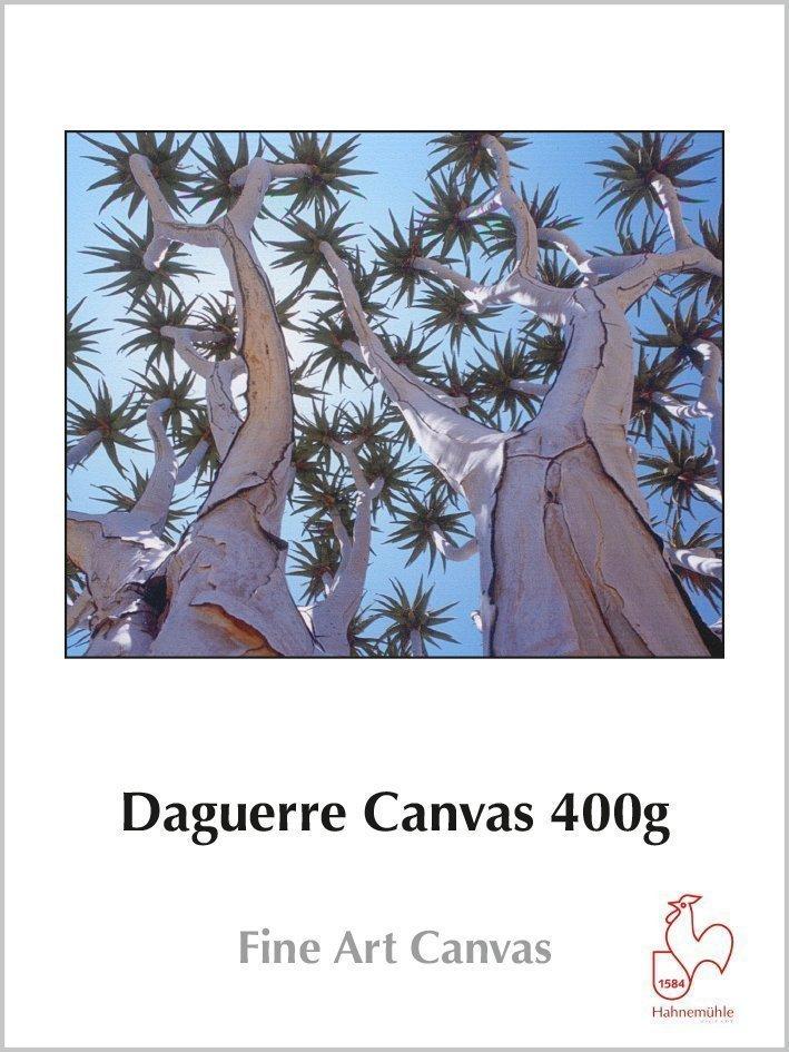 Hahnemuhle Daguerre Canvas 400g