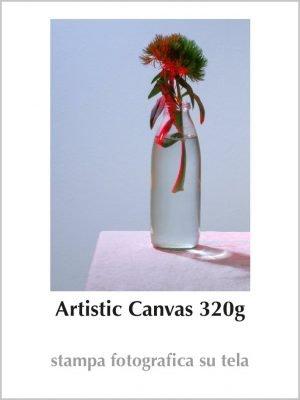 Artistic Canvas 320g